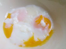Soft-boiled eggs Royalty Free Stock Photo