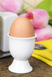 Soft boiled eggs Stock Images