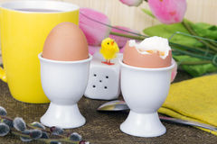 Soft boiled eggs Stock Photography
