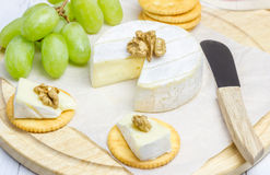 Soft brie cheese with crackers and nuts. Closeup Royalty Free Stock Photo