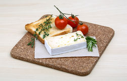 Soft brie cheese Stock Images