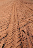 Soft Brown Earth Stock Image