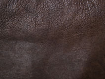 Soft brown leather Stock Images