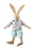 Soft bunny toy on white. Soft bunny toy isolated on white background royalty free stock image