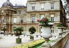 Soft and calmness view of Luxembourg garden, Paris. France stock images