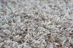 Soft carpet Stock Images