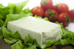 Soft cheese. Cheese, fresh tomato salad Stock Photo