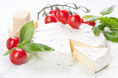 Soft cheese Brie Stock Photos