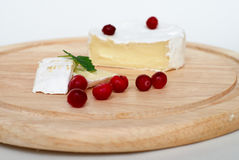 The soft cheese and cranberry. Royalty Free Stock Image
