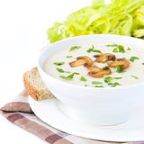 Soft cheese cream soup with mushrooms, parsley and vegetables Stock Images