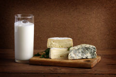 Soft cheese and milk Royalty Free Stock Photos