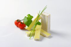 Soft cheese with thin white rind Royalty Free Stock Photos