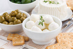 Soft cheeses, crackers and pickles, close-up Royalty Free Stock Photos