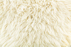 Soft color creamy of wool texture Royalty Free Stock Photography