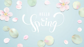 Soft color pastel background with flower petals. Royalty Free Stock Image