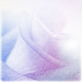 Soft color rose on mulberry paper texture Royalty Free Stock Photo