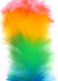 Soft colorful duster close-up Stock Photography