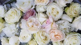 Floral background. White flowers. White roses and white peonys. Floral carpet. Floral pattern. white roses. Soft colour Roses Background. Rose Background stock photography