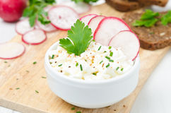 Soft cottage cheese with radish and chives in a bowl, horizontal Royalty Free Stock Images