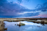 Soft delicate sunset over swamps Royalty Free Stock Images
