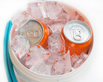 soft drink cans ice. Stock Image