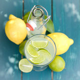 Soft drink, citrus fruits Stock Image