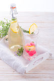 Soft drink Royalty Free Stock Images