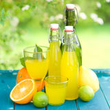 Soft drink, lemon fruits Stock Photos