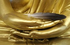 Soft feather on Buddha sculpture hand Royalty Free Stock Images