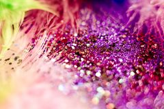 Macro shot of feather and glitter Royalty Free Stock Photo