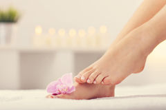 Soft female feet with french pedicure and flowers close up Stock Photography