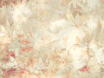 Soft floral pattern - vintage flower background Stock Images