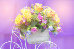 Soft flower color Abstract background. Royalty Free Stock Photo