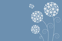 Soft flowers Royalty Free Stock Images