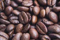Soft focus, close-up, fresh organic roasted coffee beans Stock Images