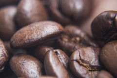 Soft focus, close-up, fresh roasted coffee beans Royalty Free Stock Images