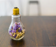 Soft focus dried flowers in light bulb Stock Photos