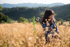 Soft focus - one young adult woman on flower filed Royalty Free Stock Photography