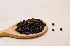 Soft focus of spicy black pepper seeds on a wooden spoon piper nigrum - piperaceae - piperales Stock Image
