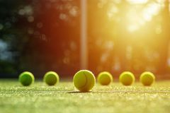 Soft focus of tennis ball on tennis grass court with sunlight. In the background stock photos