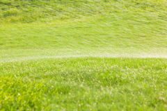 Soft focus watering drops spraying over the green golf course in Royalty Free Stock Photo