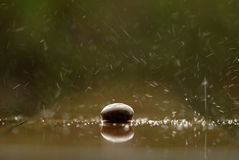 Soft focused Zen stone, a rock in the rain Royalty Free Stock Photos