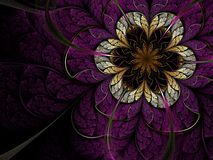 Soft fractal flower Stock Image