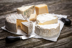 Soft French Cheese Royalty Free Stock Photo