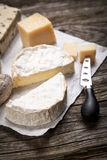 Soft french cheese Stock Photography