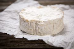 Soft french cheese Stock Images