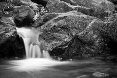 Soft fresh brook river waterfall in forest in black and white as background Royalty Free Stock Photos