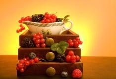 Soft Fruits royalty free stock photos