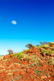 Soft green bushes on orange hillside in Australian outback with Royalty Free Stock Images