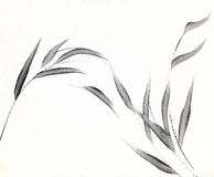 Soft Grey Bamboo Leaves. A watercolour painting of soft grey leaves Stock Photos